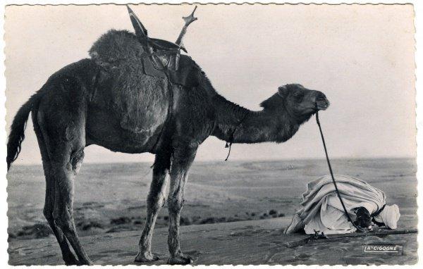 Открытка «Последняя молитва перед отъездом», 1912-1956.