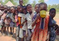 ООН: несколько государств Африки – на пороге масштабного голода