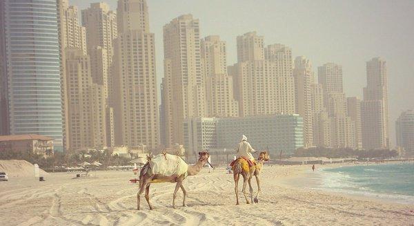 ОАЭ - одна из самых безопасных стран в мире.
