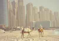 ОАЭ вошли в тройку самых безопасных стран в мире