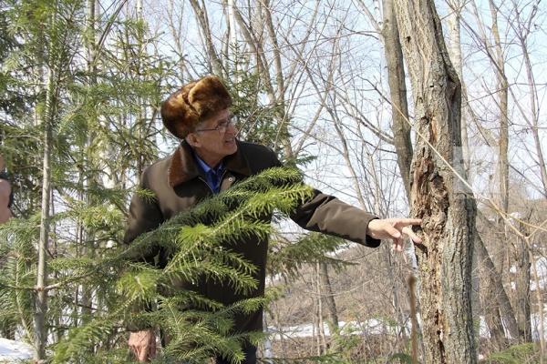 Первые деревья житель села Куюки Габдуллазян Нигматзянов начал сажать еще в 1976 году