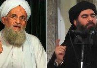 Власти Ирака: главари ИГИЛ и «Аль-Каиды» обсуждают объединение