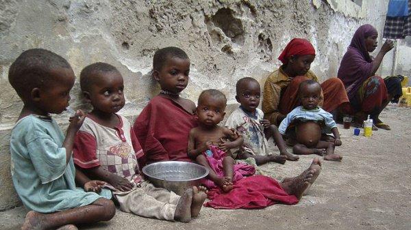 Число голодающих вмире загод выросло на28 млн человек