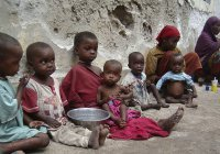 В Еврокомиссии назвали число голодающих жителей Земли