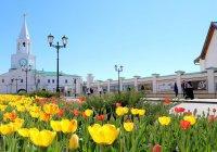 В «Казанском Кремле» наступит «Музейная весна»
