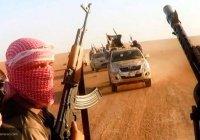 Ветеран ФСБ: ИГИЛ осознало, что проиграло войну за Сирию
