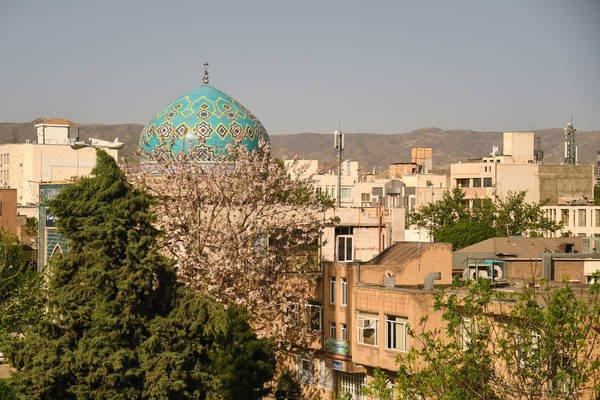 Татарстанская делегация находится в Иране.