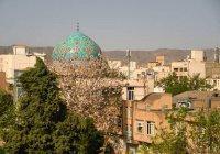 КФУ и старейший иранский университет договорились о сотрудничестве