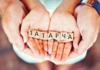 34 тыс. татарстанских школьников пройдут единое тестирование по татарскому языку