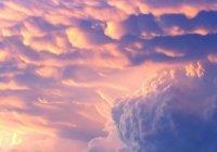 Три вещи, которые были даны пророку (мир ему) во время вознесения на Небо