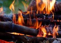 С 25 апреля в Татарстане запретят шашлыки на природе