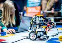 В IT-парке состоялся Cабантуй для роботов