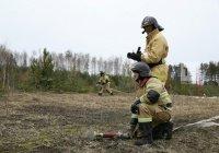 Учения по тушению лесных пожаров прошли в Татарстане