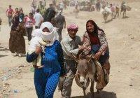 ООН: в осажденной Ракке остаются 400 тысяч мирных жителей
