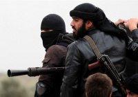«Аль-Каида» объявила Сирии «партизанскую войну»