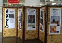 На казанском ж/д вокзале стартовала выставка по мотивам Третьяковки