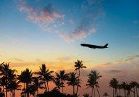 Более 70% россиян поддерживают запрет на полеты в Египет