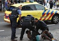 В Германии возросло количество преступлений, совершенных мигрантами