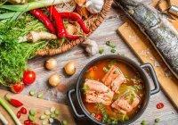 Кулинарный форум пройдет под Казанью