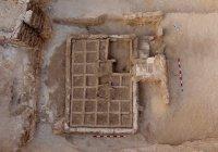 В Египте нашли погребальный сад возрастом 4000 лет