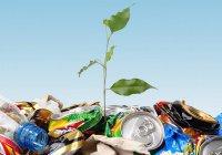 В Татарстане вдоль дорог собрали свыше 8,7 тыс. тонн мусора