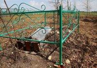 Виновником погрома на мусульманском кладбище в РТ оказался психически больной