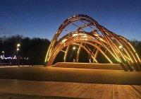 В Горкинско-Ометьевском лесу состоится «Ярмарка добрых дел»
