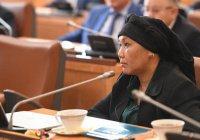 Малайзийцы представили концепцию «татарского Манхэттена» в Казани