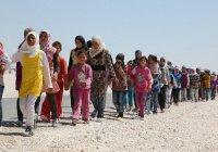 Эксперты подсчитали количество беженцев в мире