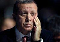 В Брюсселе запретили акцию в поддержку Эрдогана