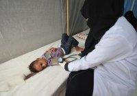 Спасать Йемен от холеры будет Саудовская Аравия