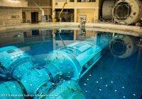 Победители экоконкурса отправятся в Центр подготовки космонавтов