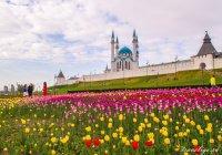 Казанский Кремль сегодня закроют для посетителей