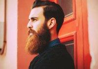 Фестиваль «Борода Поволжья 2017» пройдет в Казани