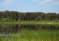 Озеро Лебяжье станет в 9 раз больше