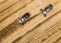 Татарстан станет пилотным регионом по глубокой переработке сельхозпродукции
