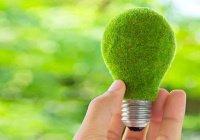 Казань станет пилотной площадкой экологической онлайн-платформы