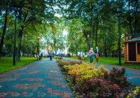 Сегодня в Казани стартуют бесплатные уличные кинопоказы