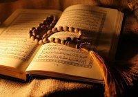 В Дании узаконили сжигание Корана и Библии