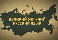 Победителей Международной олимпиады по русскому языку наградили в Казани