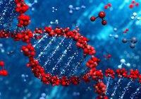 Ученые из Казани и Москвы  расшифруют геном татарских спортсменов