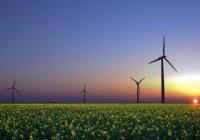 В Набережных Челнах могут построить ветропарк