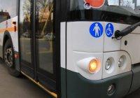 130 автобусов развезут болельщиков после матчей Кубка конфедераций в Казани