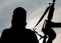 МИД РФ: раскол в арабском мире играет на руку террористам