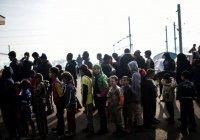 Мест для расселения беженцев может стать в 13 раз больше