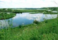 В Татарстане с 1 июля стартует природоохранный проект «Чистые берега»