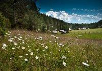 В Нижнекамске стартовал летний лагерь «ЭКОград»
