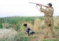 Может ли дичь, добытая на охоте, быть халяль?