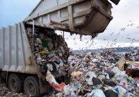 Больше 1,1 млн татарстанцев приняли участие в экологическом 2-месячнике