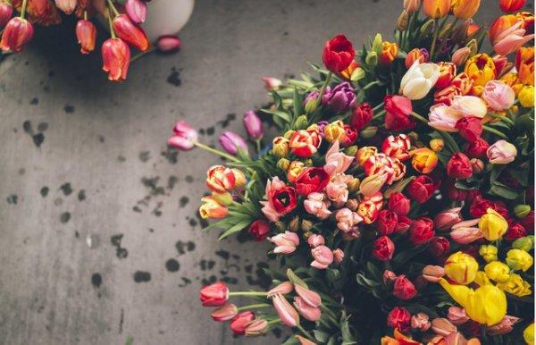 Фестиваль цветов в Челнах в 2017 году станет 29-м по счету